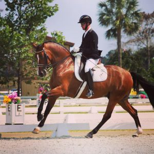PT Dressage Filemon